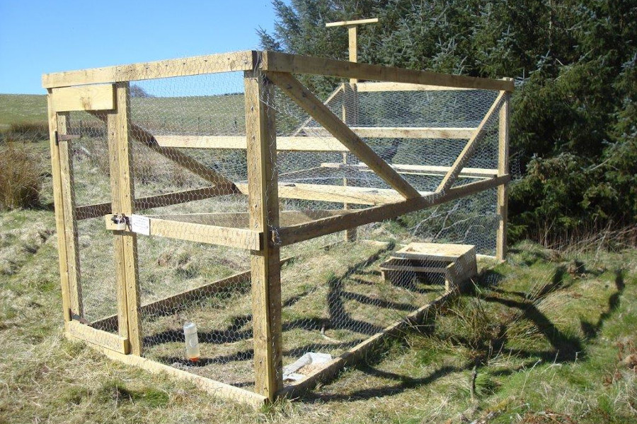 A multi-catch cage trap
